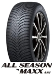 ALL SEASON MAXX AS1 215/60R17 96H